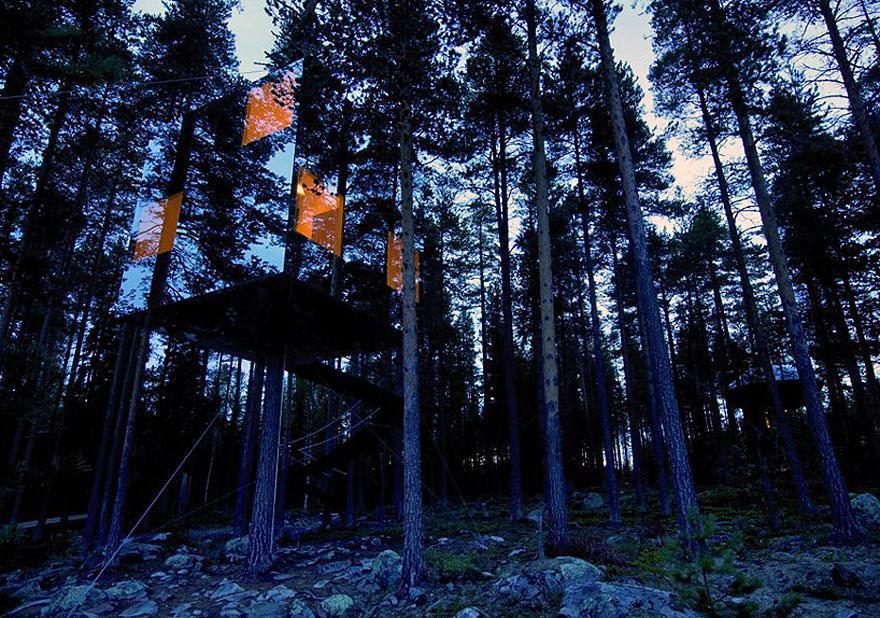 casa albero di vetro